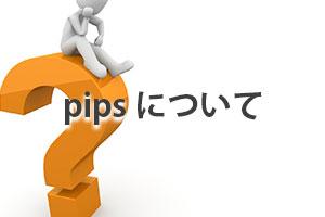 pipsについての解説